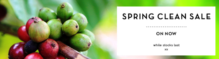 spring-clean-sale-category-banner.png