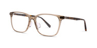 Brown with Honey Tortoise Temples (C2)