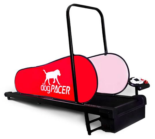 dogpacer-2.jpg
