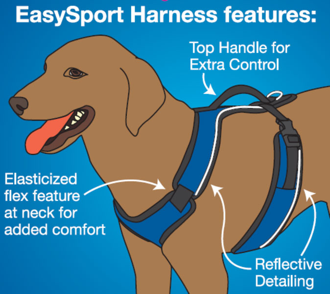 easysport-harness-diagram.jpg