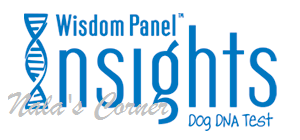 insights-logo.png