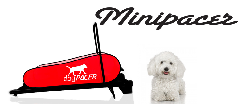 minipacer-header.png