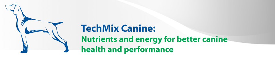 techmix-canine.jpg