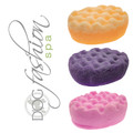 Dog Fashion Wash Sponge