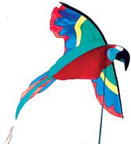 Parrot Banner