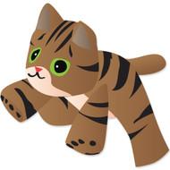 8 Ft. Brown Tabby Kitten