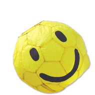 "13"" Smiley Ball with 60"" Pole & Wall Mount"
