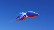 11-Ft Rainbow Flying Squid