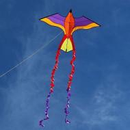 Violet  Parrot