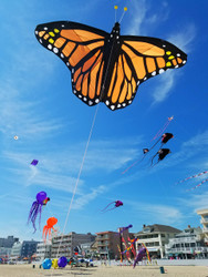 Giant 10-ft Monarch Butterfly Kite
