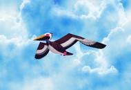 3D Pelican