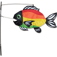 Swimming Fish - Bright Rainbow Fish