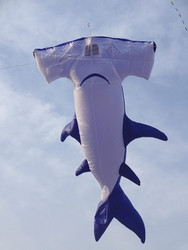 11 Ft. Hammerhead Shark