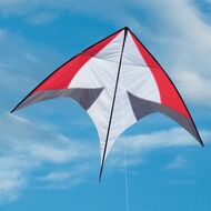 ITW Skate Glider Kite