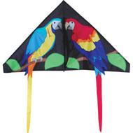 56 inch Paradise Parrots