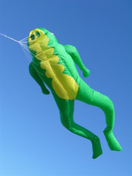 Le Frog 4.2M Inflatable