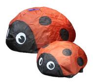 Bouncing Bug / Ladybug