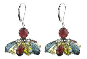 Colored Crystal Cluster Earrings - Botanical Jewelry