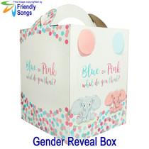 Gender Reveal Box