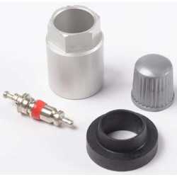 The Main Resource TR20015 TPMS Replacement Parts Kit For GM With TRW Clamp