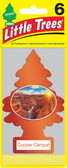 Little Trees Air Fresheners 6-Pack Copper Canyon