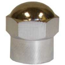 The Main Resource TI108 Chromed Plastic Sealing Hex Cap, 100 Per Box for TPMS