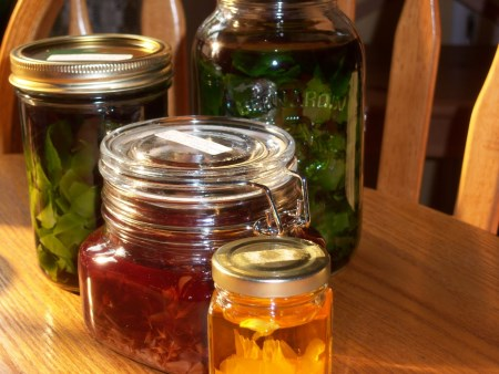 herbaltinctures450x338.jpg