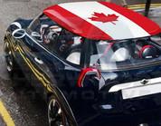 Canada Flag Roof Skin DIY Decal