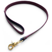 StockRoom JT Signature Collection Brown Leather Leash with Gold Hardware