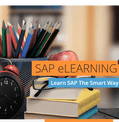 SAP Introduction Package 2 with LiveSAP Sandbox (+SAP1 +SAP2)