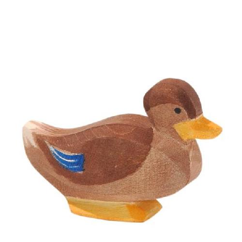 Ostheimer Duck - Sitting
