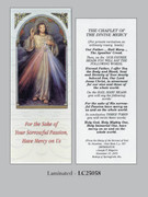 Bookmark: Chaplet Divine Mercy