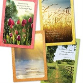 Boxed Cards(12) Sympathy Serenity (CB51726)