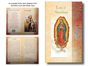 Mini Lives of Saints: Our Lady of Guadalupe (LF5216)