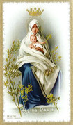 TJP Holy Card: Queen of Peace