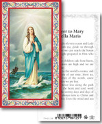 Holy Cards: 700 SERIES: Mary Stella Maris pk100