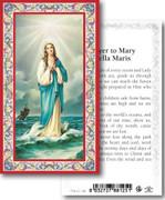 Laminated Holy Card: 700 SERIES: Mary Stella Maris