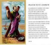 TJP Holy Card: St Andrew (TJP738)
