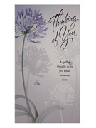 Packet Cards (6): Thinking of You (CD20817)