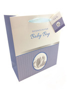 Gift Bag: Baby Boy (GB6113)