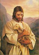 Unframed Canvas Print: Jesus Holding Lamb 40x60cm (PI20X20JLAMB)
