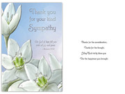 Packet Cards (6): Sympathy Thank You (CD13610)