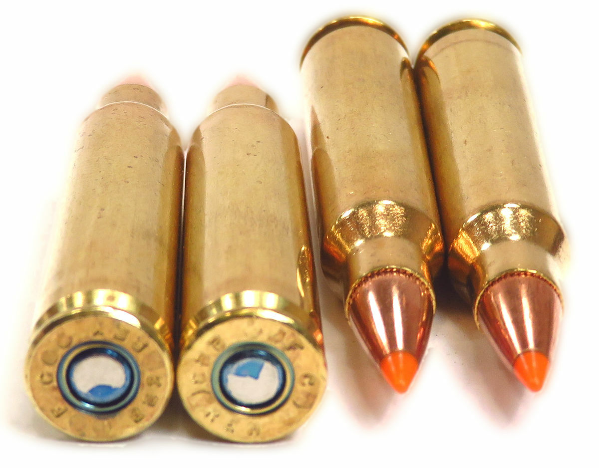 223 5 56x45 Ammo 55gr Nosler Ballistic Tip, Federal Tactical Rifle Urban  TRU (T223F) 20 Round Box