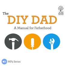 The DIY DAD: A Manual for Fatherhood (MP3 Series)