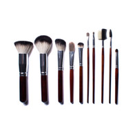Deluxe Badger Set of 10 Brushes