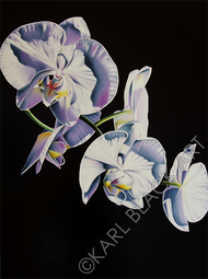 orchid floral art and original flower prints