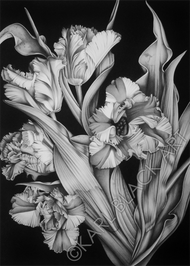 floral black and white original art and prints
