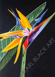 Birds of paradise original floral art and flower prints