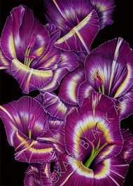 tropical flower art and floral prints