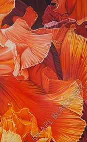 Autumn's Fire by Karl Black Floral Painting and Prints